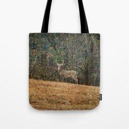 Buck At Pinson Mounds Tote Bag