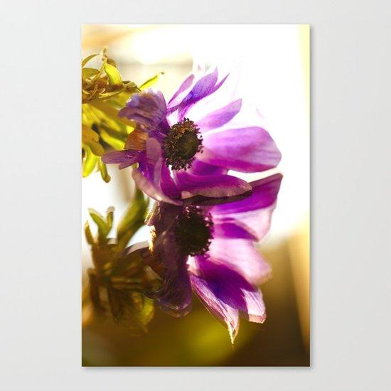 Flower Reflection Like A Kiss  Canvas Print