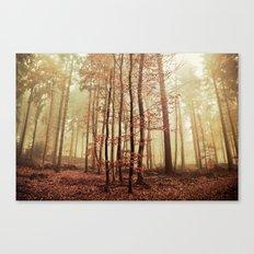It´s autumn again Canvas Print