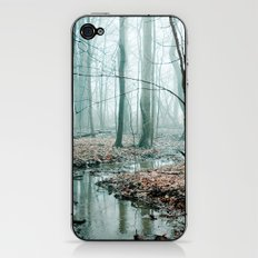 Gather up Your Dreams iPhone & iPod Skin