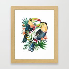BELIZE AND FABIO THE TOUCANS Framed Art Print