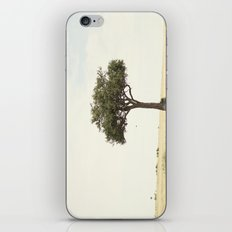 tree hugger::kenya iPhone & iPod Skin