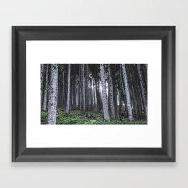 Fairest Forest Framed Art Print
