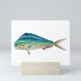 Mahi Mahi Dolphinfish Mini Art Print