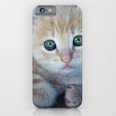 Red Kitten Slim Case iPhone 6s
