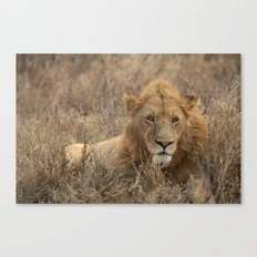 Big Poppa Canvas Print
