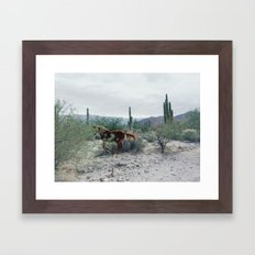 Mexican Horse Hide Framed Art Print
