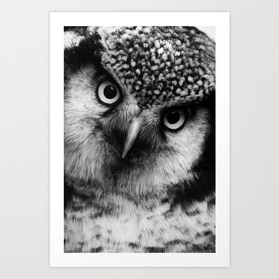 Owl series no.6 Art Print
