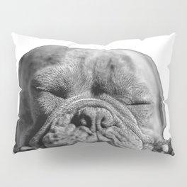 sleeping puppy Pillow Sham
