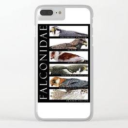 Falcons of the World Clear iPhone Case