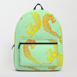Sporty Sunset Circles Pattern Backpack