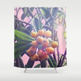 Loquat Shower Curtain