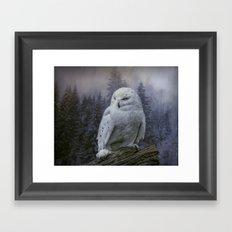 Snowy Owl looking for prey Framed Art Print