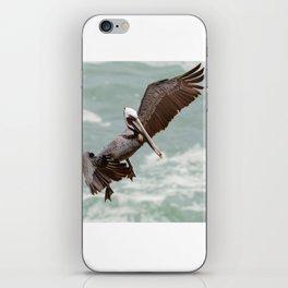 California Brown Pelican Landing iPhone Skin