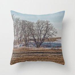 Winter Marsh Landscape Throw Pillow