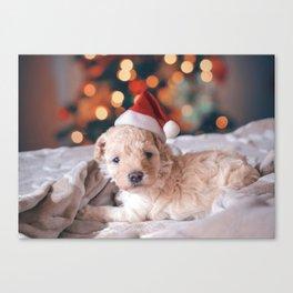 Santa Dog (Color) Canvas Print