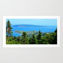 Bonaventure Island panoramic Art Print