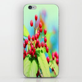 Red autumn berrys iPhone Skin