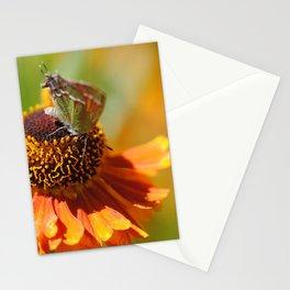 Flutter Shy Stationery Cards