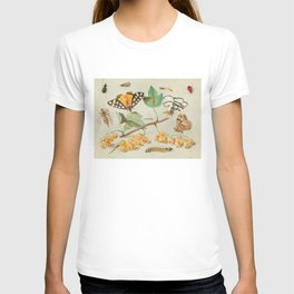 Study of Butterfly and Insects 17th Century T-shirt
