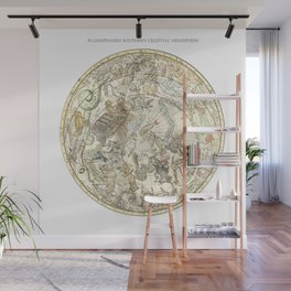 Zodiac Constellation - Southern Sky Wall Mural