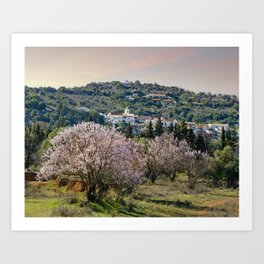 Algarve village in Spring Art Print
