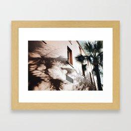 Palm Shadows Framed Art Print