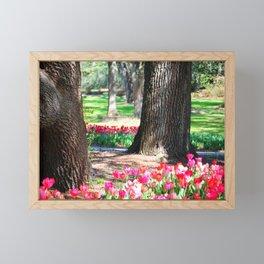 Garden Of Tulips Framed Mini Art Print