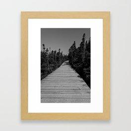 walkway through the trees Framed Art Print