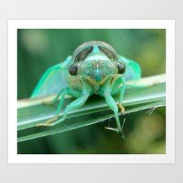 Lets Get Buggy Art Print