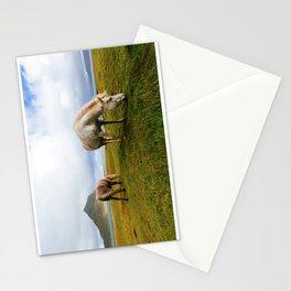 Horses 5 Stationery Cards