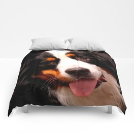 Bernese Mountain Dog Comforters