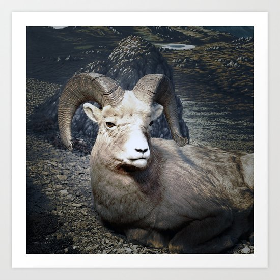Tom Feiler Mountain Goat Art Print