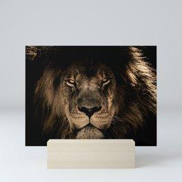 Lion Face Closeup Mini Art Print
