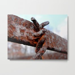 Forever Intertwined Metal Print