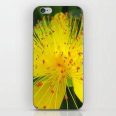 Flower I iPhone & iPod Skin