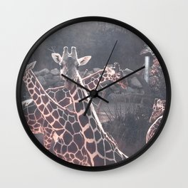 Giraffe Picture // Spotted Long Neck Graceful Creatures in Wildlife Preserve Wall Clock