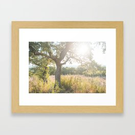 Sunrise in the Texas Hill Country Framed Art Print