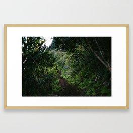 Kalalau 3 Framed Art Print