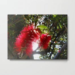 Christmas in the Spring Metal Print