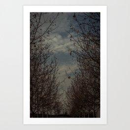 La senda. Art Print