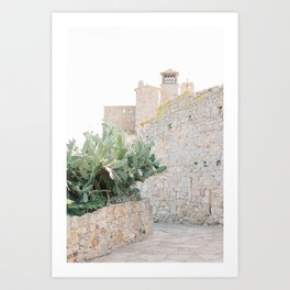 Medieval city in Spain | cactus and old bricks | Europe travel photography | Pastel photo print Art Print