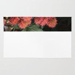 Desert Flowers Rug