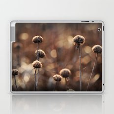 Copper Field Evening Laptop & iPad Skin