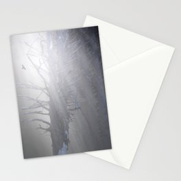 Sunrise in the Trump Forets. Stationery Cards