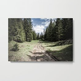 A walk in the Woods... Metal Print