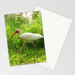 Ibis Walking Stationery Cards
