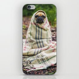 Snug pug in tartan iPhone Skin