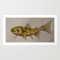 trout Art Prints featuring Cutthroat Trout by Four Mile Fox
