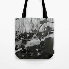 Snow covered ivy Tote Bag